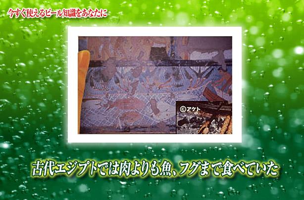 http://www.kirin.co.jp/entertainment/daigaku/HST/hst/no95/images/img01.jpg